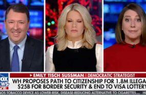 Fox News democratic political strategist